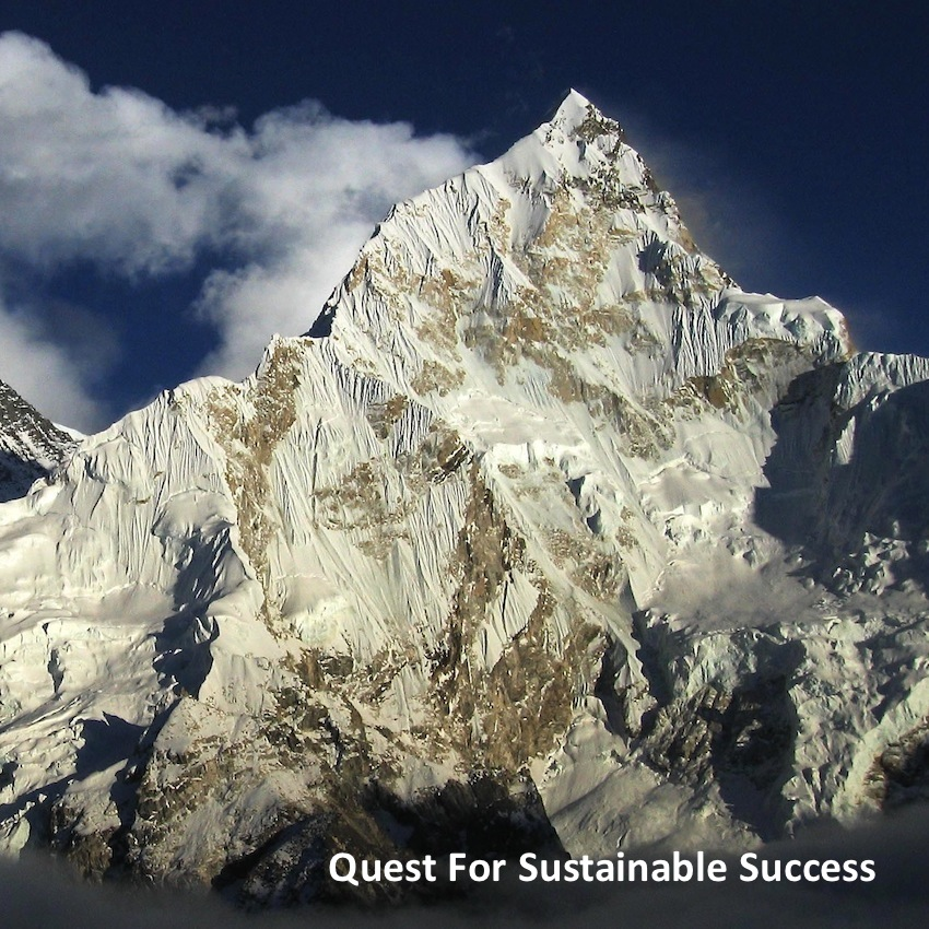 Quest for Sustainable Success