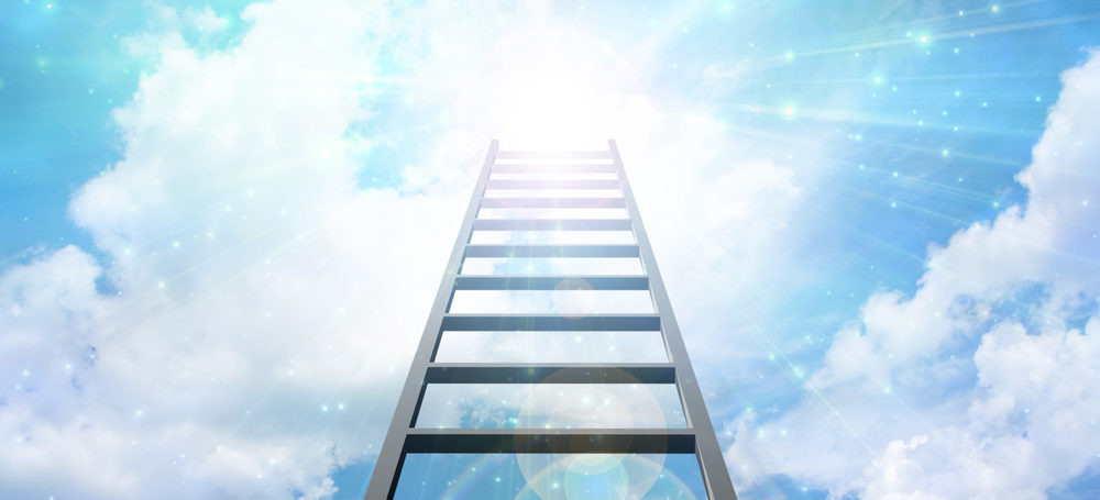 Seven Steps to HR Heaven